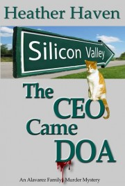 CEO-Silver Silicon Valley copy